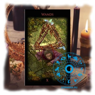 Советы на ближайшие дни - расклад Таро для каждого знака зодиака Телец