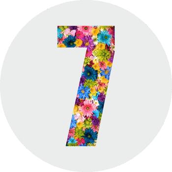 Число 7 - https://gornnisa.ru Ваш лучший год жизни - по дате рождения