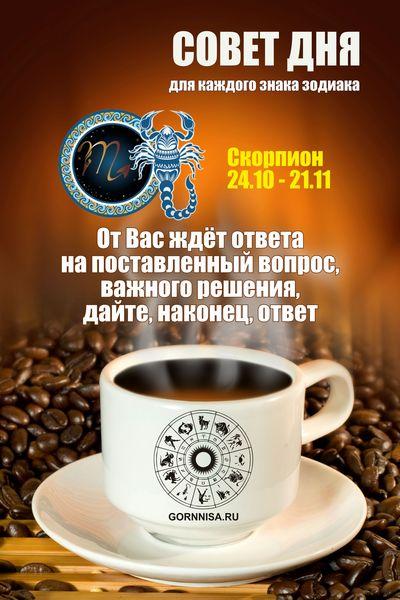 Скорпион 24.10 - 21.11 GORNNISA.RU