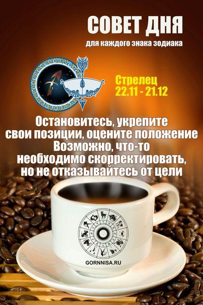 Стрелец 22.11 - 21.12 GORNNISA.RU