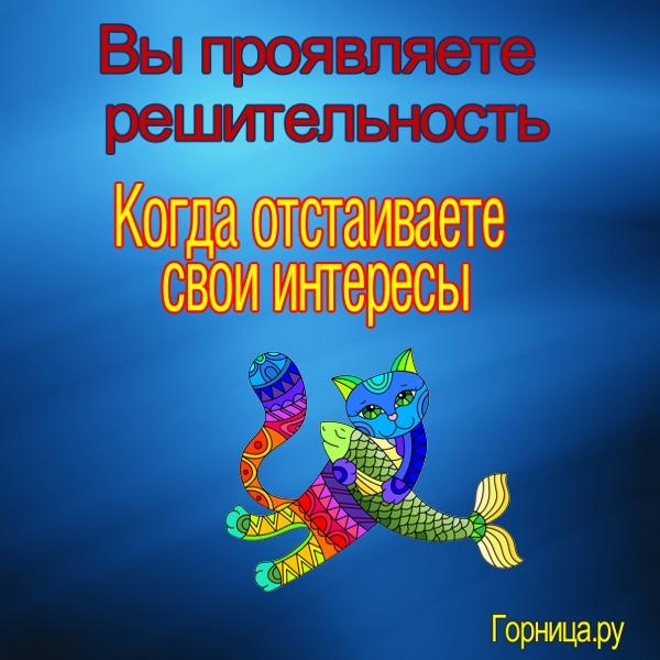 Кот 1 - https://gornnisa.ru/