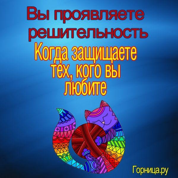 Кот 2 - https://gornnisa.ru/