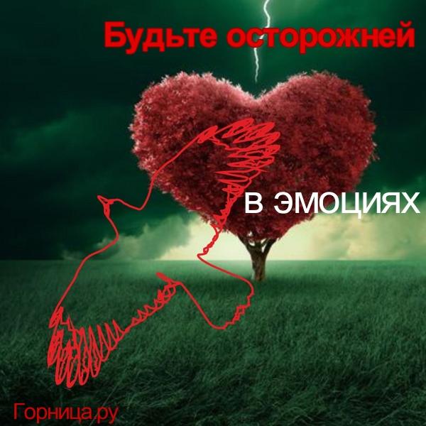 Ворон 2 - https://gornnisa.ru/
