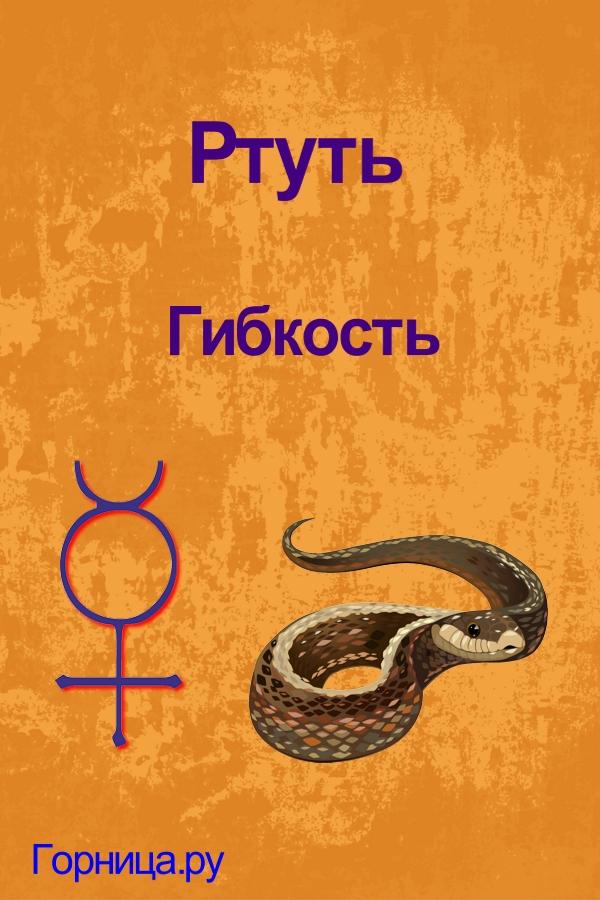 Символ #2 - https://gornnisa.ru/