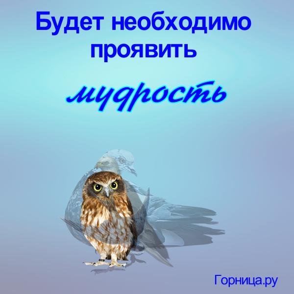 Сова - https://gornnisa.ru/