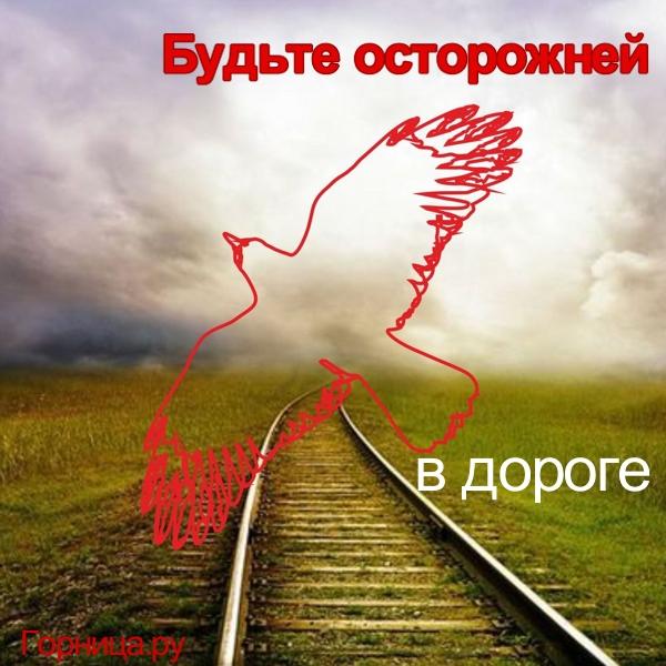 Ворон 4 - https://gornnisa.ru/