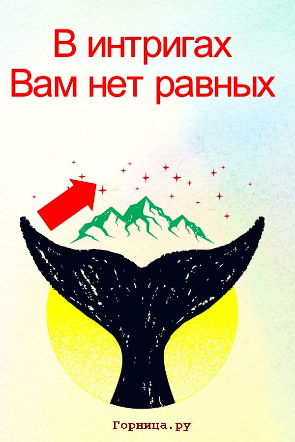 Звезды - https://gornnisa.ru/