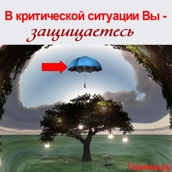 Зонт - https://gornnisa.ru/