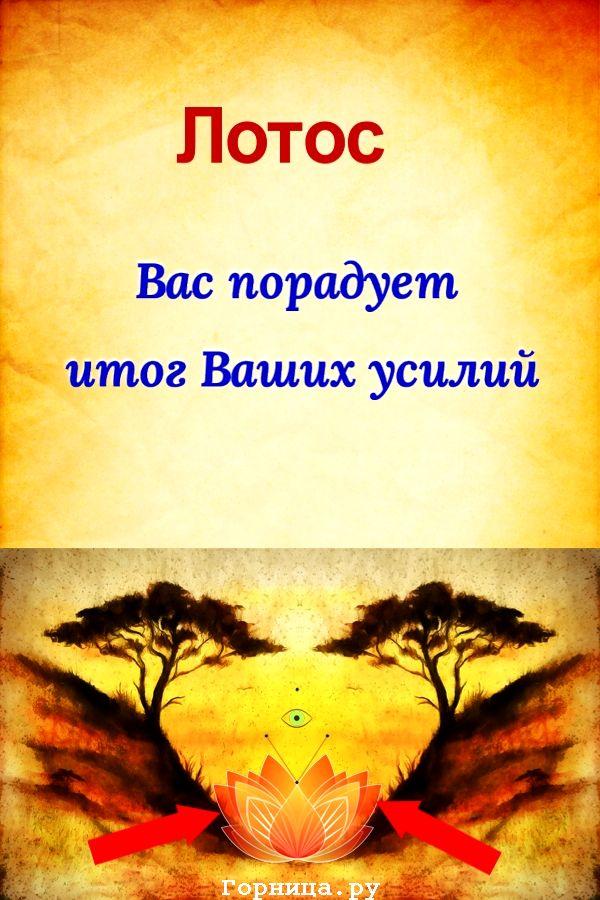 Лотос - https://gornnisa.ru/