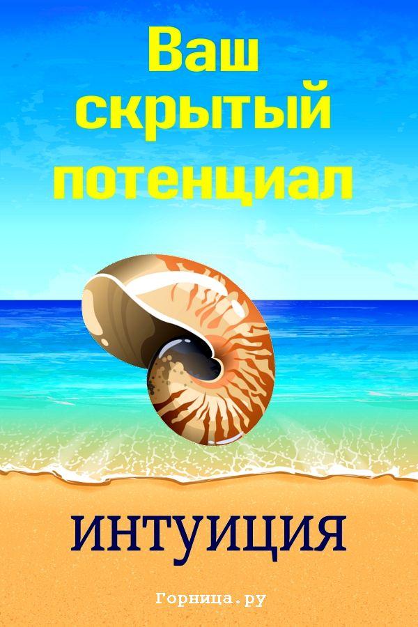 Ракушка 1 - https://gornnisa.ru/
