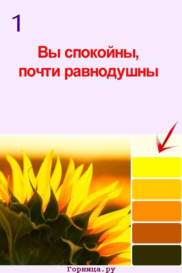 Цвет #1 - https://gornnisa.ru/