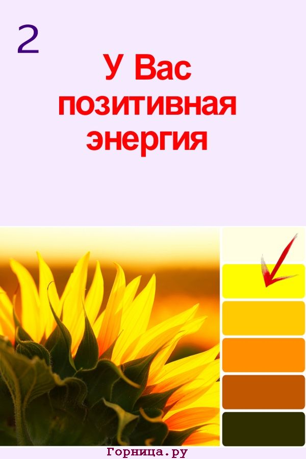 Цвет #2 - https://gornnisa.ru/