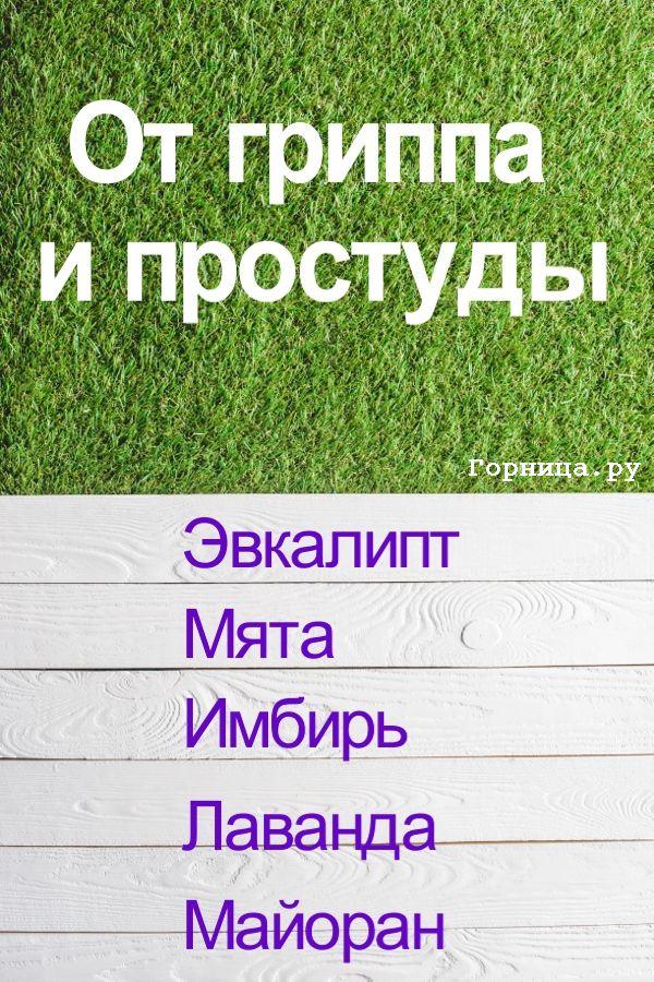 От простуды - https://gornnisa.ru