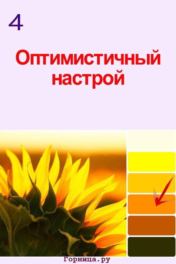 Цвет #4 - https://gornnisa.ru/