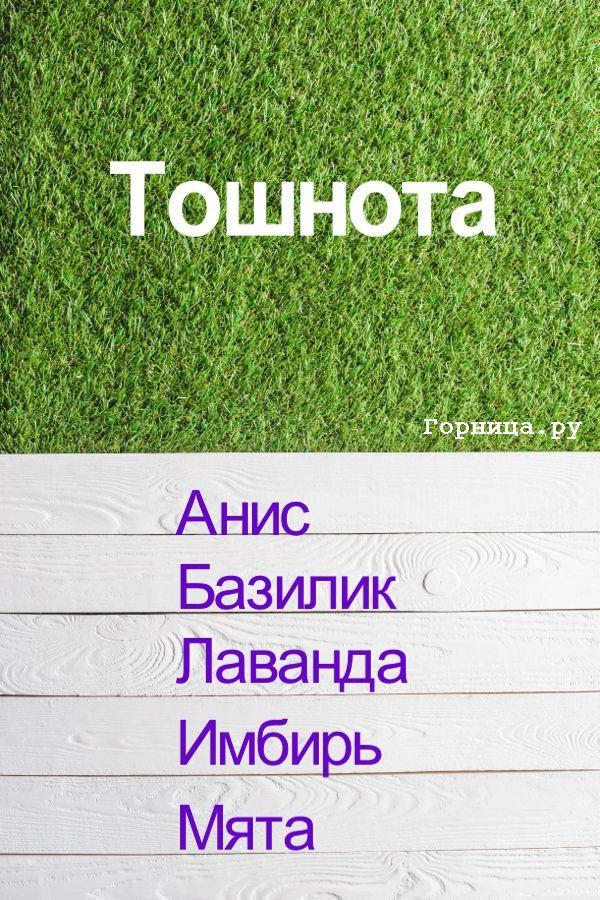 От тошноты - https://gornnisa.ru