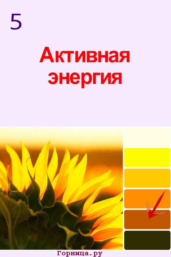 Цвет #5 - https://gornnisa.ru/