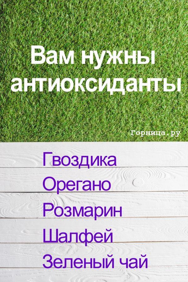 От старения - https://gornnisa.ru