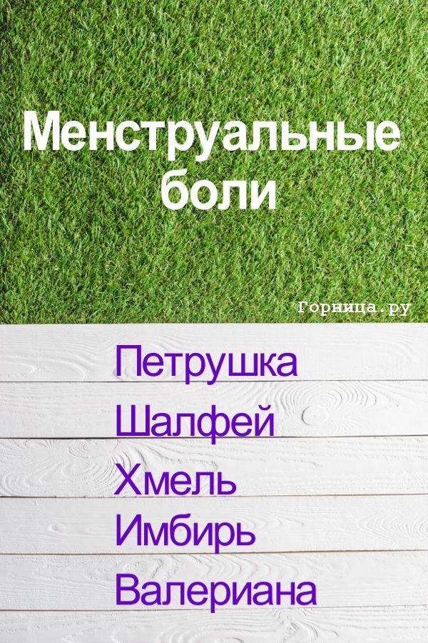 При менструальных болях - https://gornnisa.ru