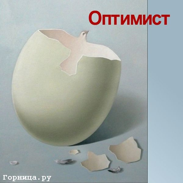 Яйцо https://gornnisa.ru/