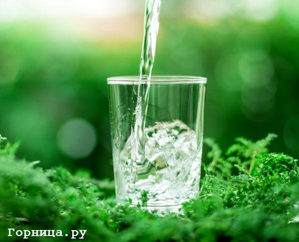 Чистая вода - https://gornnisa.ru/