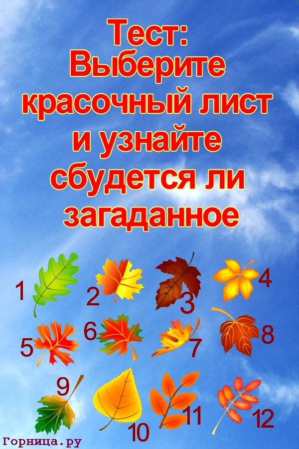Тест прогноз: Выберите красочный лист и узнайте сбудется ли загаданное  https://gornnisa.ru