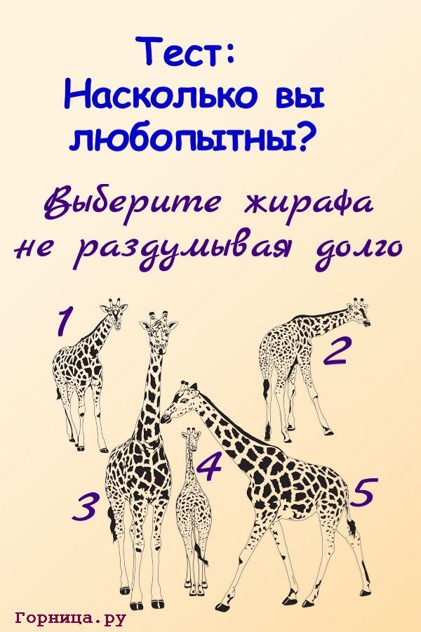 Тест: Насколько вы любопытны? https://gornnisa.ru/