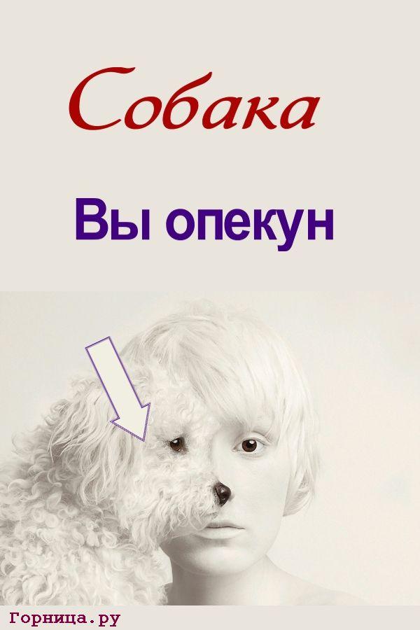 Профиль собаки - https://gornnisa.ru
