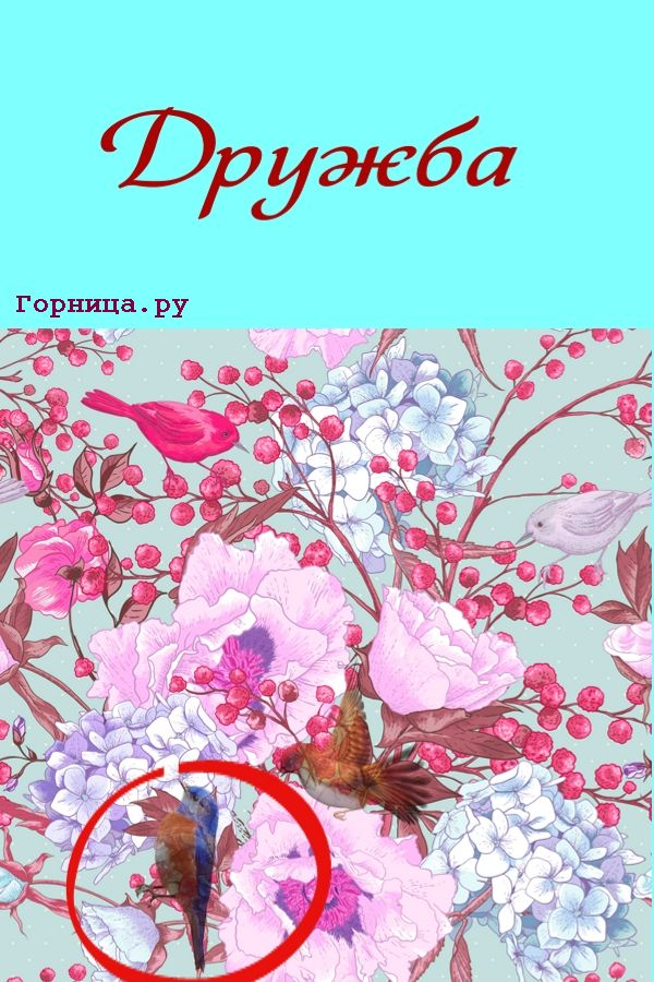 Синяя птица - https://gornnisa.ru