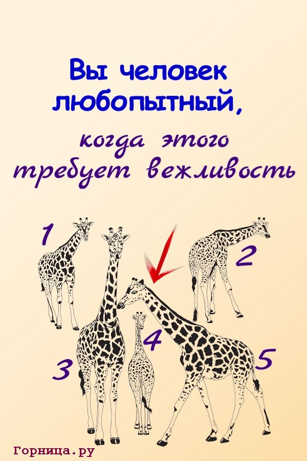 Жираф 5 - https://gornnisa.ru/