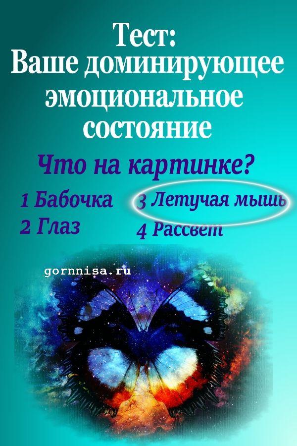 #3 Летучая мышь - https://gornnisa.ru/