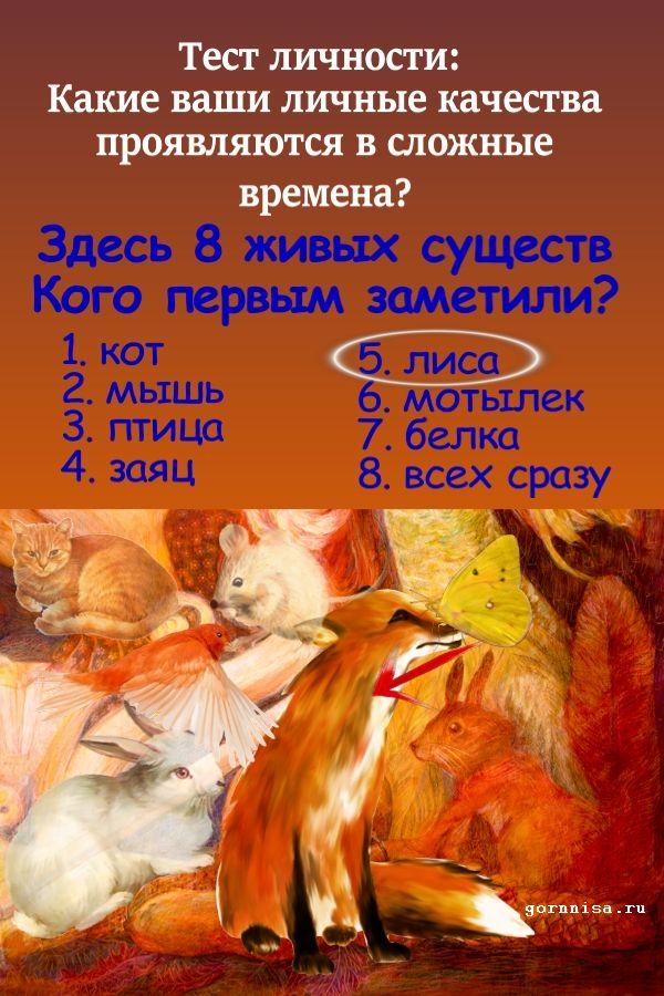 Лиса - https://gornnisa.ru