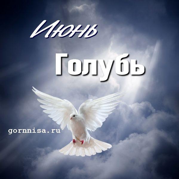 Июнь - голубь - https://gornnisa.ru