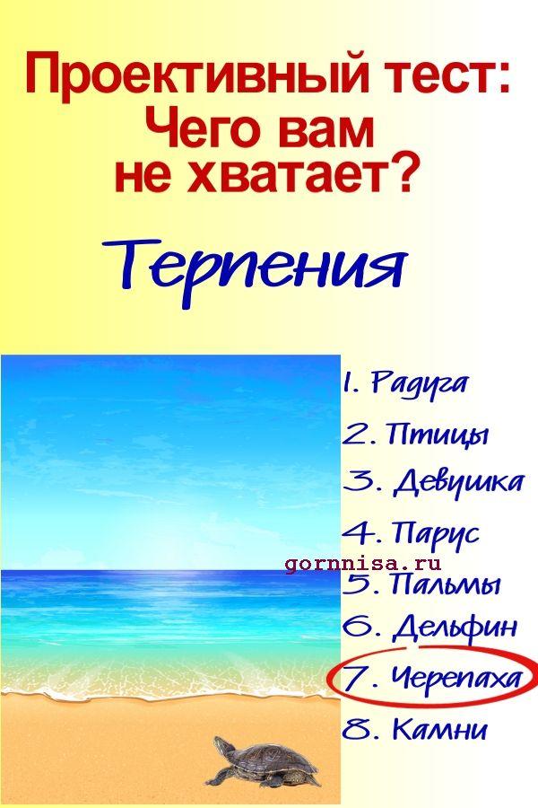 Черепаха - https://gornnisa.ru/