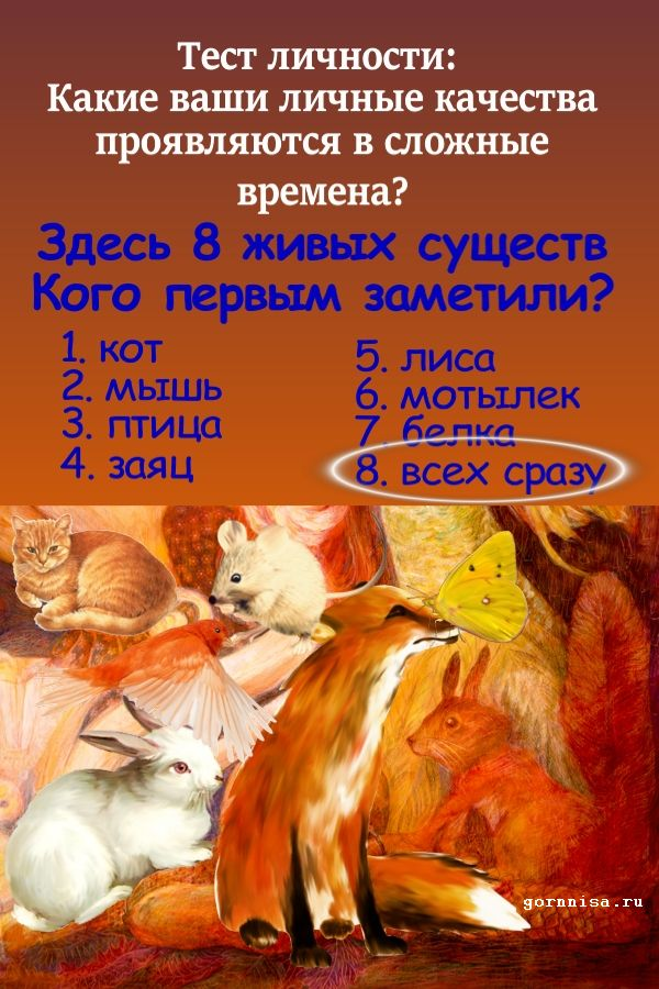 Все сразу https://gornnisa.ru
