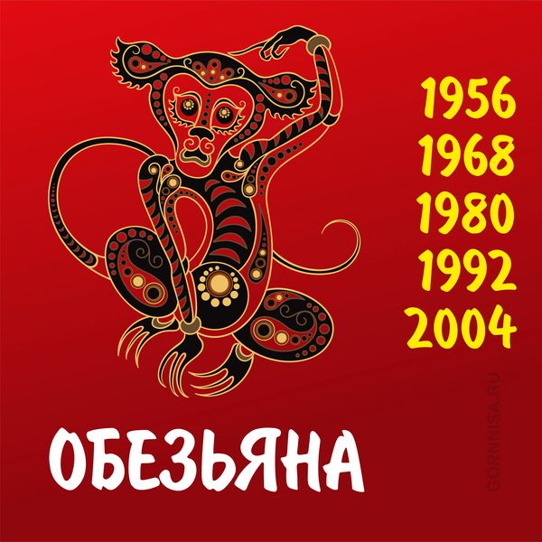 Обезьяна - https://gornnisa.ru/