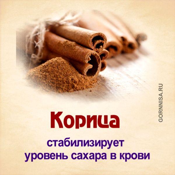 Лечимся правильно - травами - https://gornnisa.ru/