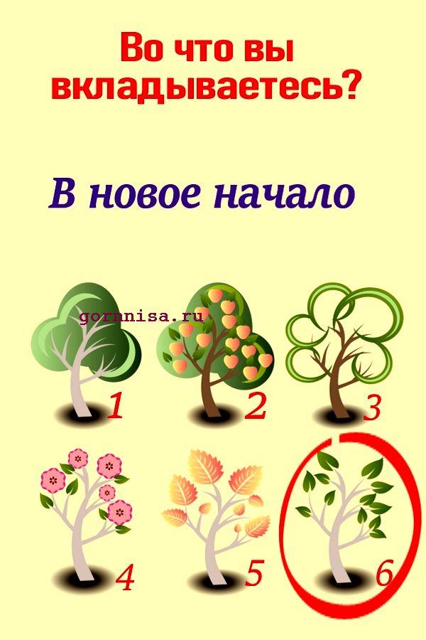 Дерево 6 - https://gornnisa.ru/