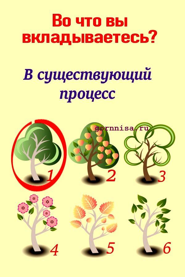 Дерево 1 - https://gornnisa.ru/