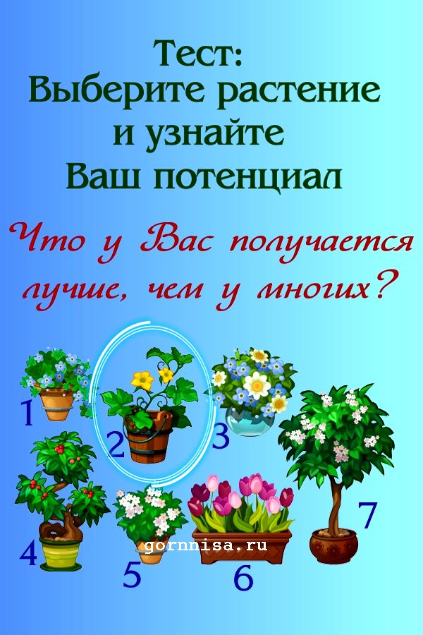 Тест: Выберите растение и узнайте ваш потенциал https://gornnisa.ru/