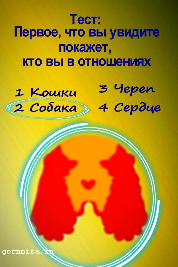 #2 Собака - https://gornnisa.ru/