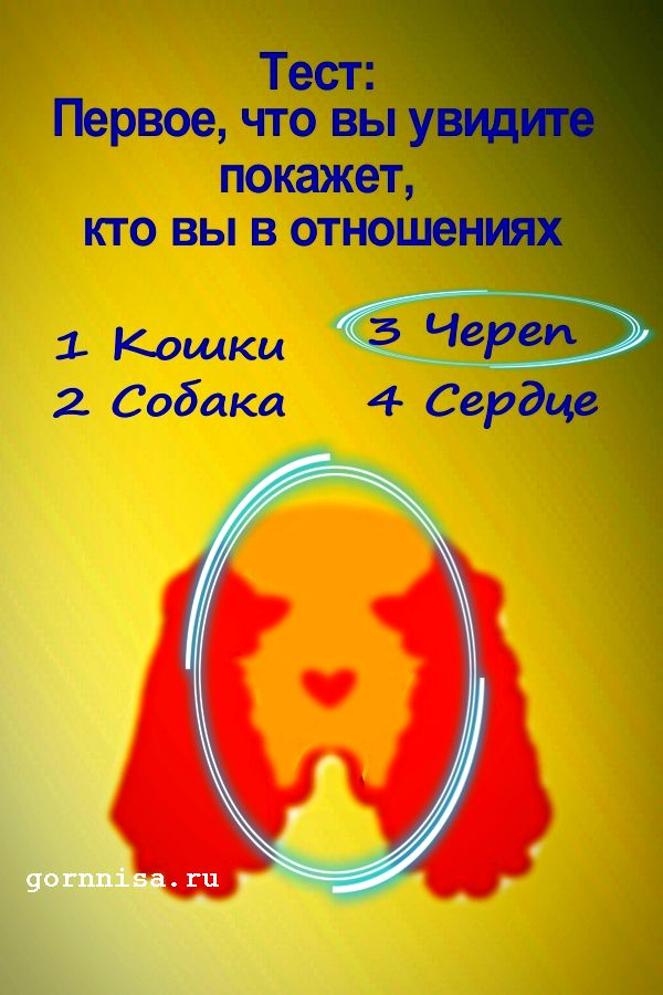 #3 Череп - https://gornnisa.ru/