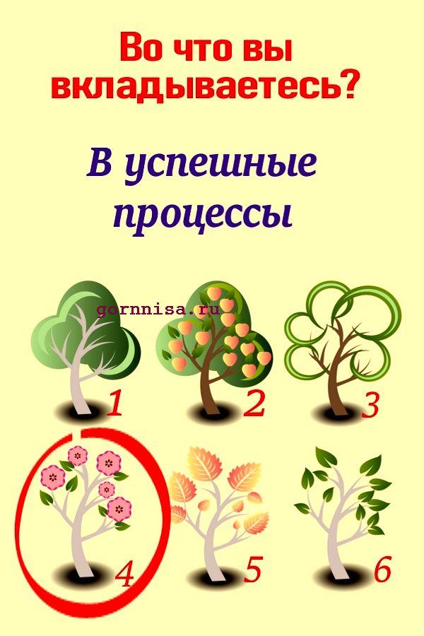 Дерево 4 - https://gornnisa.ru/