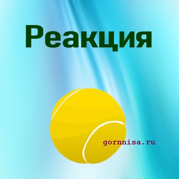 Мяч 4 - теннис - https://gornnisa.ru