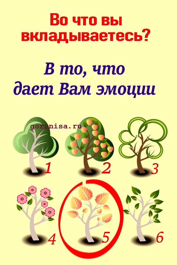 Дерево 5 - https://gornnisa.ru/