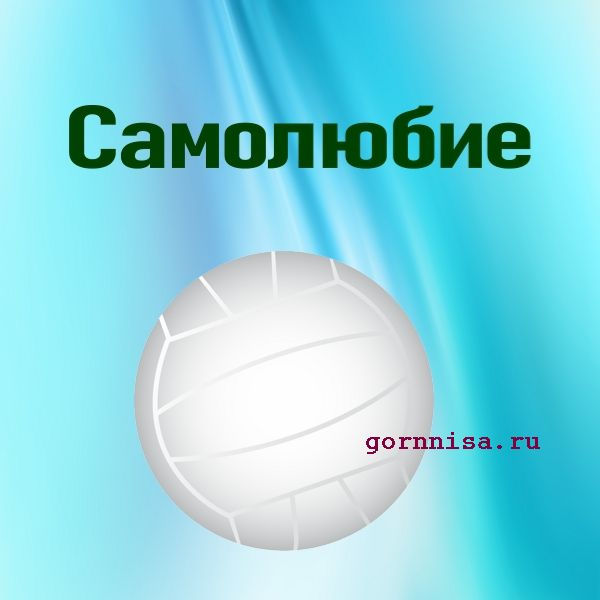 Мяч 7 - волейбол - https://gornnisa.ru