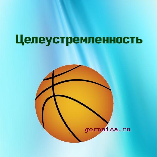 Мяч 8 - баскетбол - https://gornnisa.ru