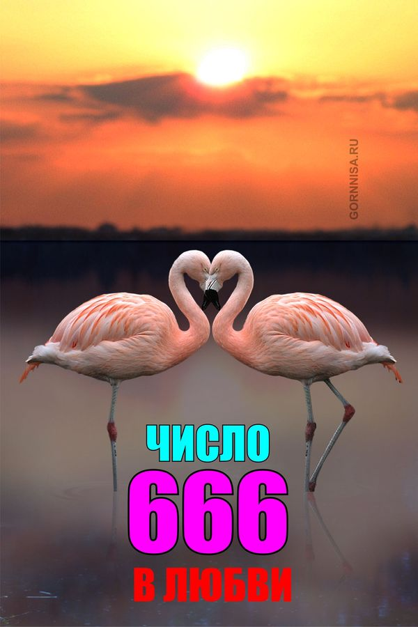 Число 666 в любви - https://gornnisa.ru/