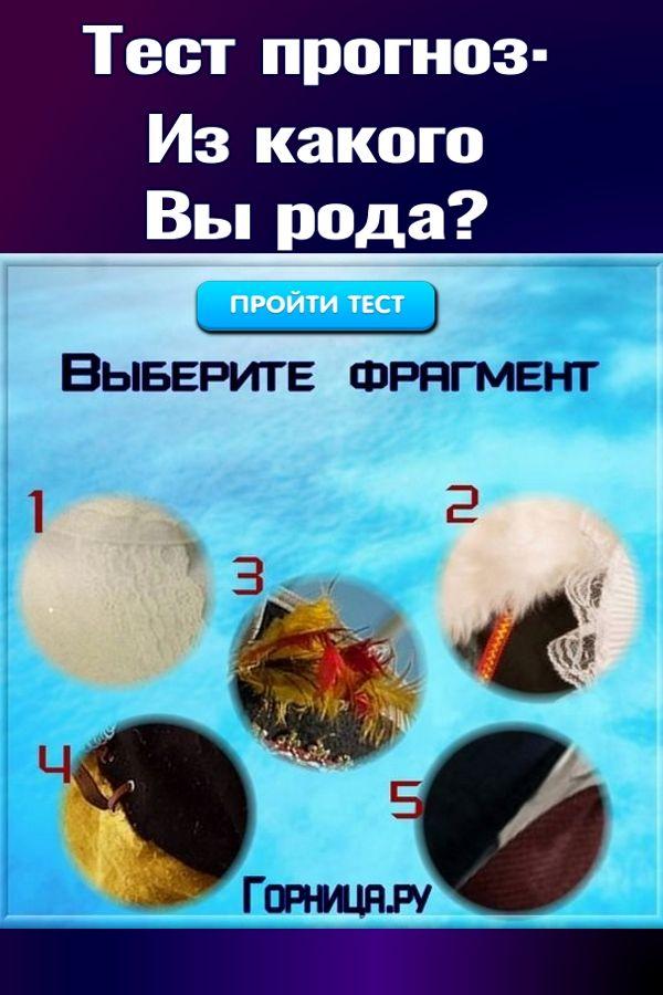 Тест прогноз: Из какого вы рода? Выберите фрагмент  https://gornnisa.ru/
