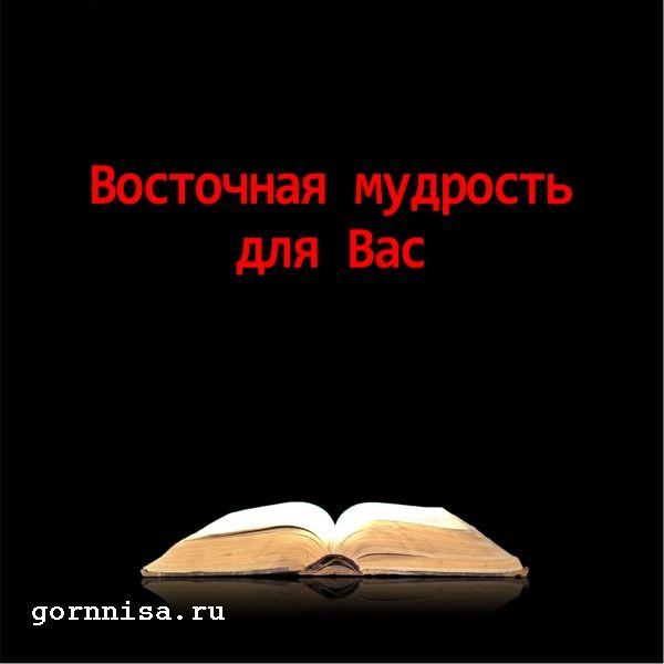 Книга #1