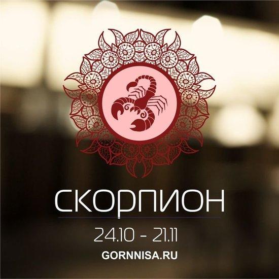 Успешные вопреки всему - кто они по знаку зодиака - gornnisa.ru